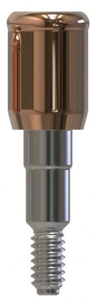 Docklocs® Abutment Set Gerade Camlog® Camlog® Ø3,3 x GH 5,0 mm