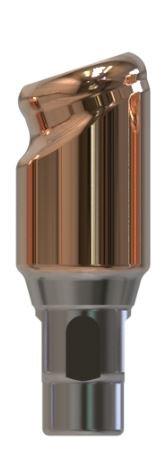Docklocs® Abutment Set Abw. 18° Var. A Straumann® Bone Level® RC x GH 4,0 mm