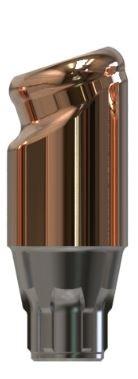 Docklocs® Abutment Set Abwinkelung 18° Variante B Dentsply® Astra® OsseoSpeed® Profile EV 4,2mm x GH