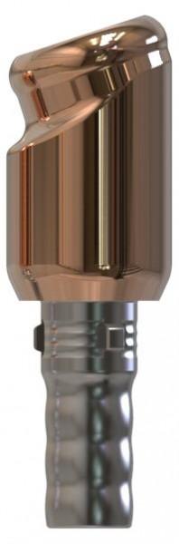 Docklocs® Abutment Set Abwinkelung 18° Variante B Camlog® Camlog® Ø3,3 x GH 4,0 mm