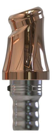 Docklocs® Abutment Set Abwinkelung 18° Variante B Camlog® Camlog® Ø5,0 x GH 5,0